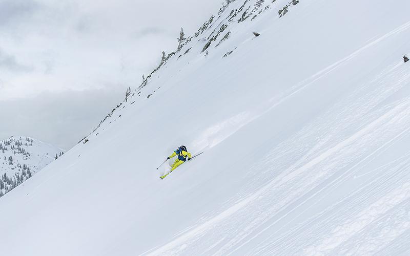 dynafit bs box ski s220