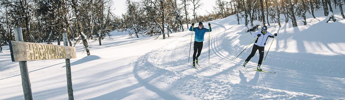Langlauf Ausruestung Winter 20-21