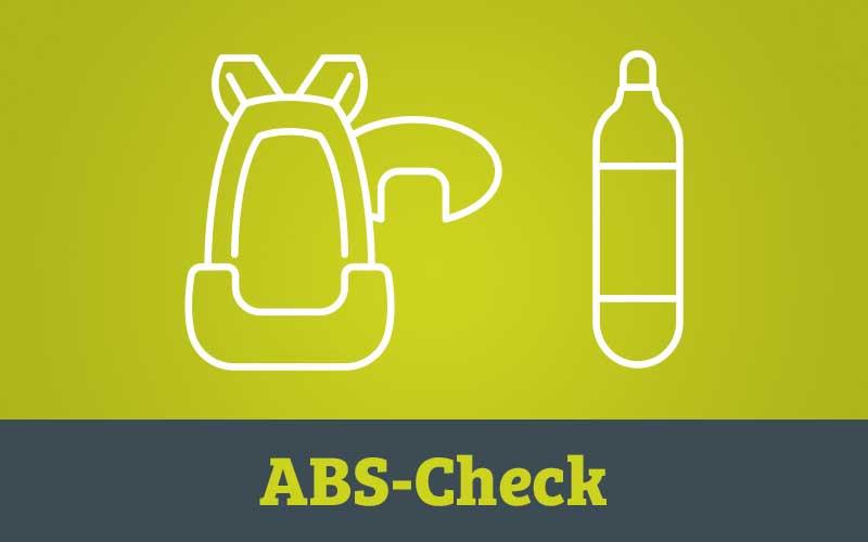 Servicebox ABS-Check